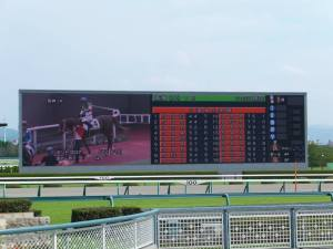 "The infield ""Turf Vision"" at Hanshin Racecourse. Photo by Jose Ramos, September 14, 2013"