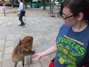 Jordan interacts with deer in the city of Nara. Photo by Jose Ramos, September 12, 2013